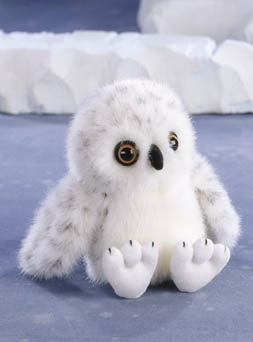 Snowy Owl Baby